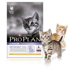 Purina Pro Plan Gato Junior Pollo y Arroz 3 kg