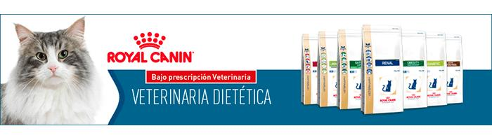 Veterinary Diet Gato