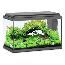 Aquatlantis Acuario Advance Led 50x25 Negro