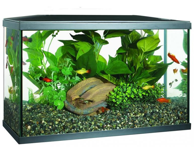 Acuario Marina Led Kit  38L  51.3 x 26 x 32.8 cm