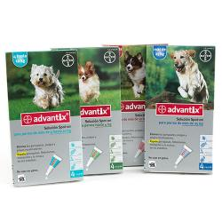 Advantix Pipetas Multiprotección 4-10 kg 4Pipetas