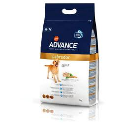 Advance Adult  Labrador 12 kg