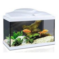 Aqua Acuario 20 Led Blanco