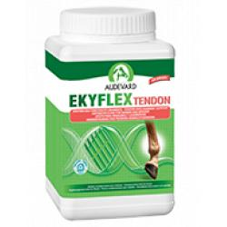 Audevard Ekyflex Repair Tendon 600g