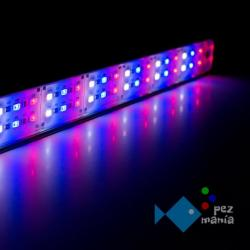 Ledacuarios Barra Doble Led Azul 44w 100cm