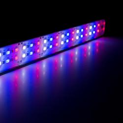 Ledacuarios Barra Led Sumergible Blanco Azul 50cm