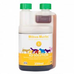 Hilton Herbs KD Solution Renal Perro 250 ml