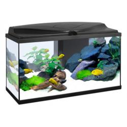 Ciano Acuario Aqua 80 Light