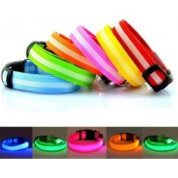 iPet Collar Led Ajustable 30-40cm Azul