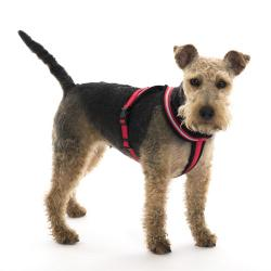 Comfy harness red xl