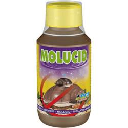 Dajana Molucid 100 ml