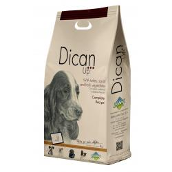 Dibaq Dican Up Complete Recipe 3kg