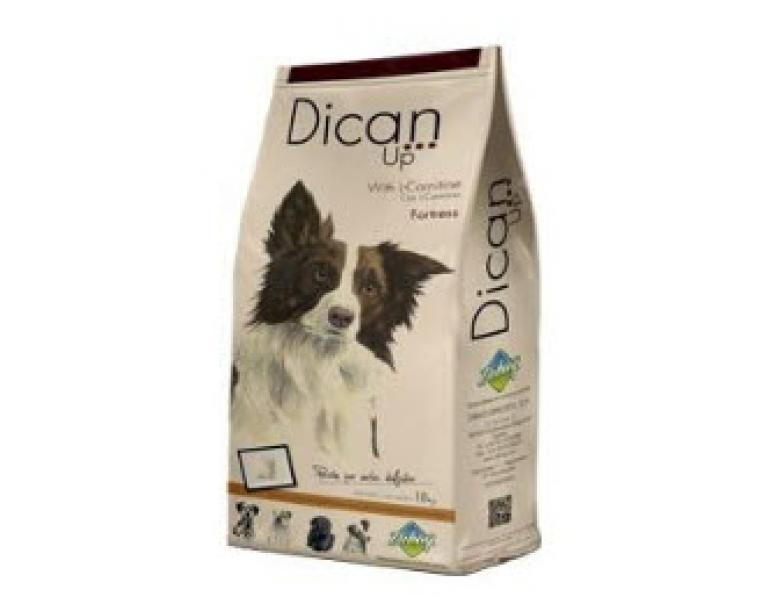 Dican Up Fortress 14kg