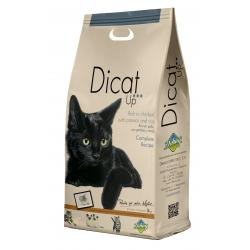 Dibaq Dicat Up Complete Recipe 3kg