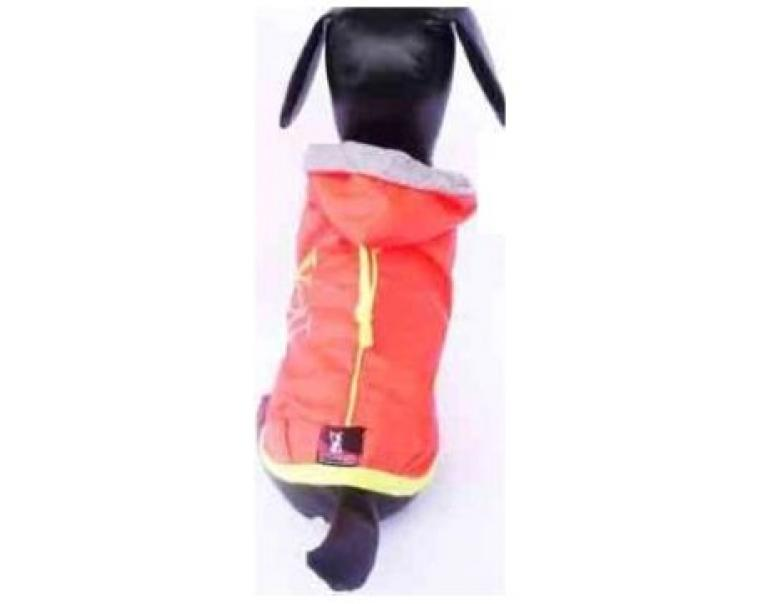 Dogmodel You Naranja Talla 2