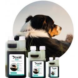 Doxel Senior Suplemento Natural para Perros Senior 500ml