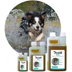 Doxel Sports Suplemento Natural para Perros Deportistas 100ml