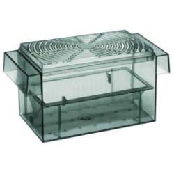 Europet Paridera Guppy 16,8 x 8,3 cm