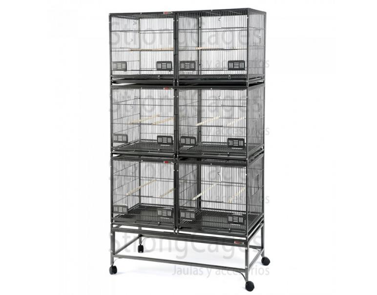 SC Strongcages Expositor Roma 100x50x172,7cm