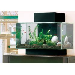 Hagen Fluval Edge Acuario 23L Led Color Negro