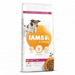 Iams Proactive Mature & Senior +7 Años 12Kg