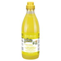 Fruit of the Groomer Champú Jengibre y Sauco 1L