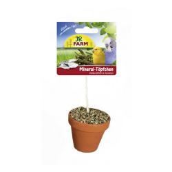 JR Farm Birds Maceta Cotorras y Loros 260g