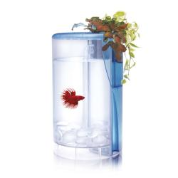 Ica Kit Betta Flora Led para Peces y Plantas 2L