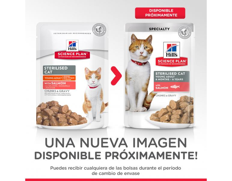 PACK AHORRO Hill's Science Plan Gato Adult Sterilised Salmón 12x85g