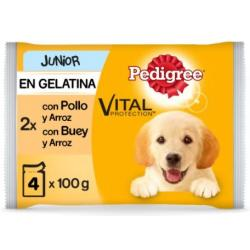 Pedigree Junior Pollo y Arroz Alimento Húmedo para Perros 100g