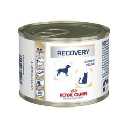PACK AHORRO Royal Canin Canine/Feline Recovery 12x195gr