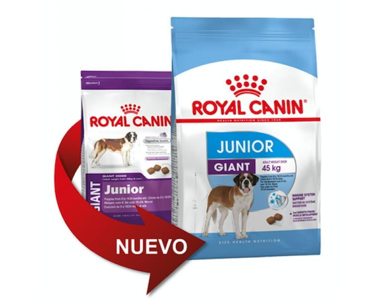 PACK AHORRO Royal Canin Giant Junior 2 x 15kg