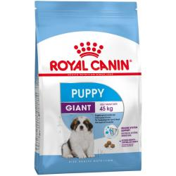 PACK AHORRO Royal Canin Giant Puppy 2 x 15kg