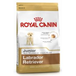 PACK AHORRO Royal Canin Labrador Retriever Junior 2 x 12kg