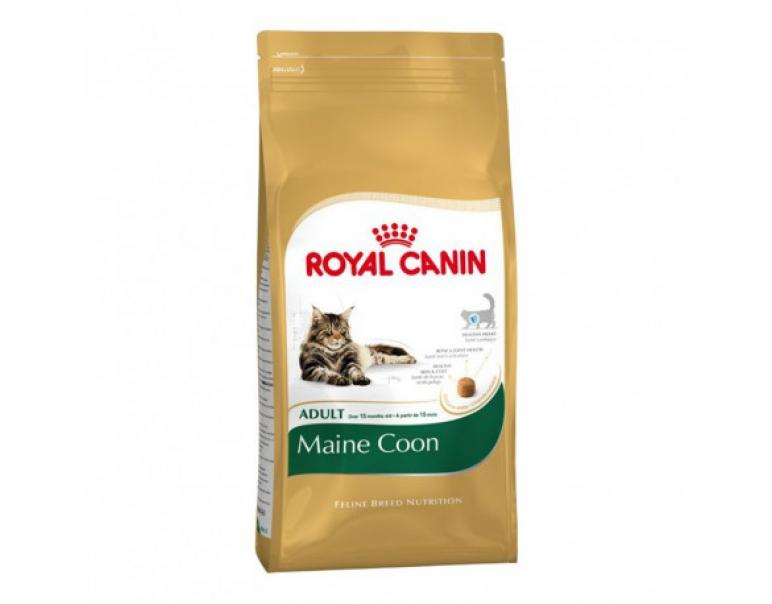 PACK AHORRO Royal Canin Pienso Adult Maine Coon 2 x 4 Kg