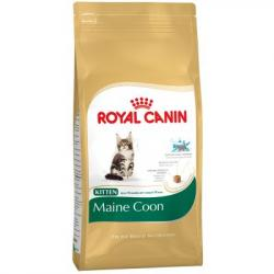PACK AHORRO Royal Canin Pienso Maine Coon Kitten 2 x 4 Kg