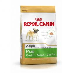 PACK AHORRO Royal Canin Pug Carlino Adulto 2 x 3 Kg
