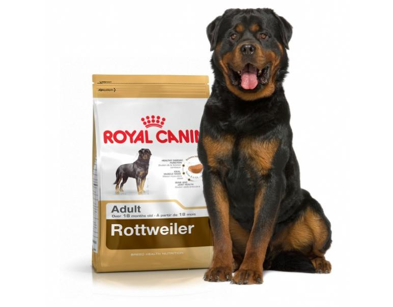 PACK AHORRO Royal Canin Rottweiler Adulto 2 x 12 Kg