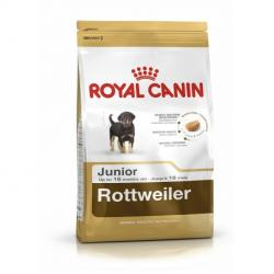 PACK AHORRO Royal Canin Rottweiler Junior 2 x 12 Kg