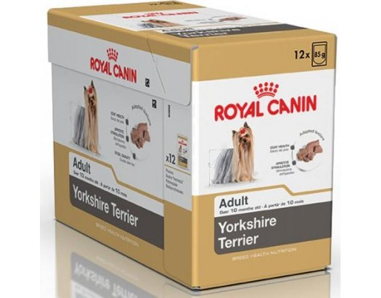 PACK AHORRO Royal Canin Yorkshire Terrier Adulto 12x85gr
