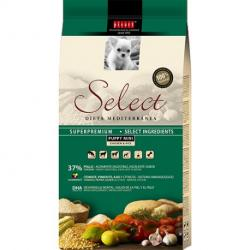 Picart Select Cachorros Mini Pack 2 x 10 Kg