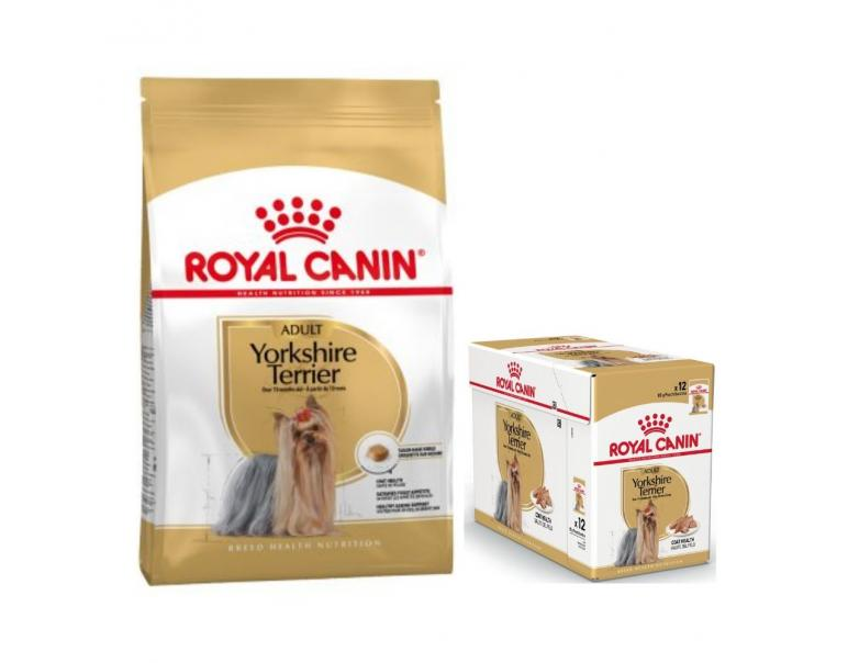 Royal Canin Yorkshire Terrier 3 kg + 12 x 85 g