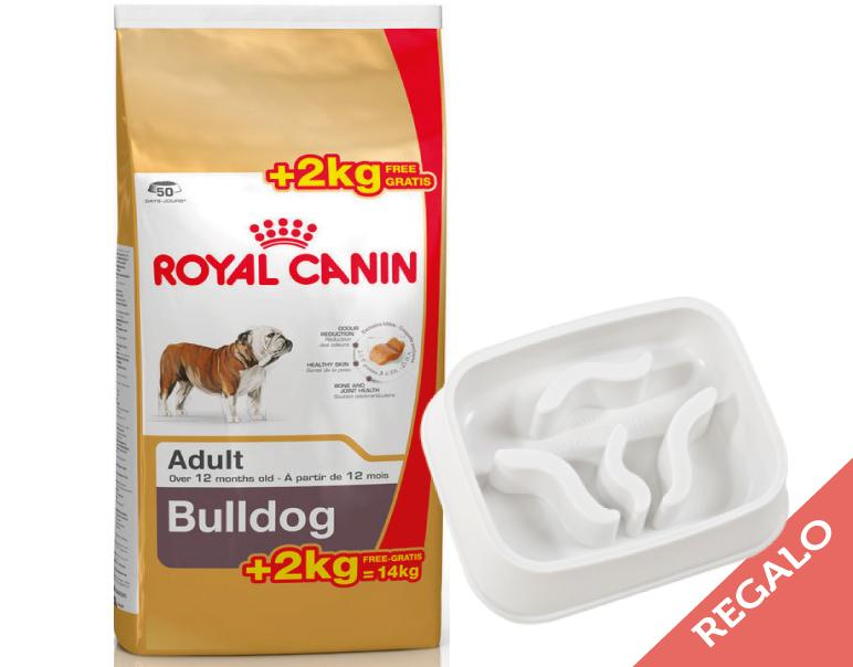 Royal Canin Bulldog Adult 12+2kg - REGALO: Comedero Slow Feed
