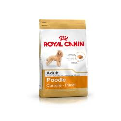 Royal Canin Caniche Adulto 1.5 kg