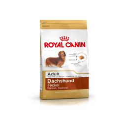 Royal Canin Dachshund Teckel Adulto 1.5 kg