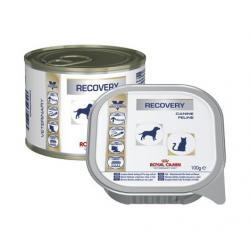 PACK AHORRO Royal Canin Perro/Gato Recovery 12x195gr