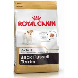 Royal Canin Jack Russell Adulto 1.5 kg