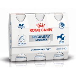 Royal Canin Recovery Liquid (Perros y Gatos)  3x200ml