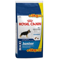 Royal Canin Maxi Junior 15 kg + 3kg Gratis