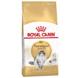 Royal Canin Adult Norwegian Forest Cat 10kg